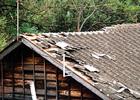 3.台風被害